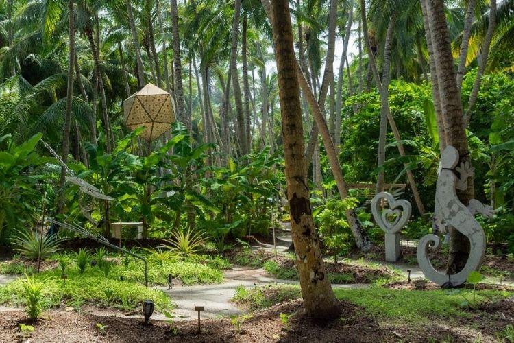 palm trees and greenery of Maldives resort Amilla
