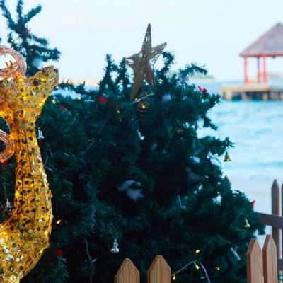 festive season at Komandoo